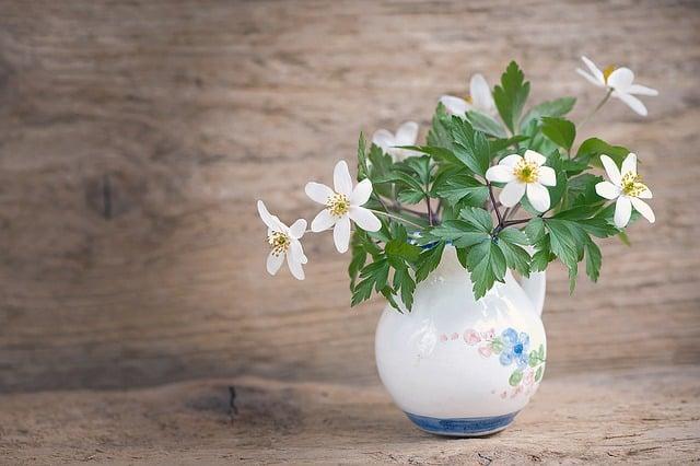 primavera en tu hogar